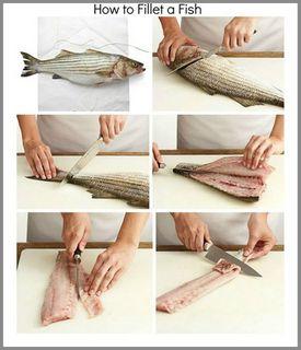 fileto   nasıl çıkarılır